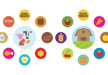 Farm Infographic Vectors - бесплатный vector #145949