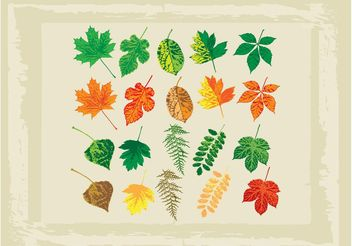 Full Color Vector Leaves - бесплатный vector #146289