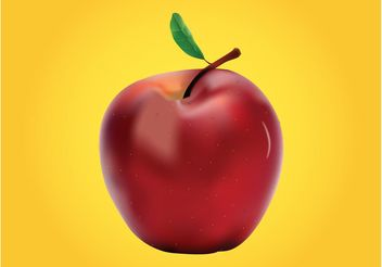 Red Apple - vector gratuit #146529