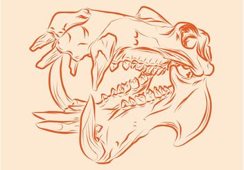 Scary Animal Skull - vector gratuit #156849