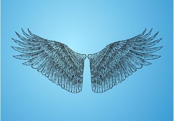 Feathers - vector #157059 gratis