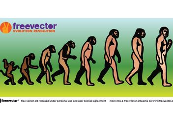 Evolution - vector #157399 gratis