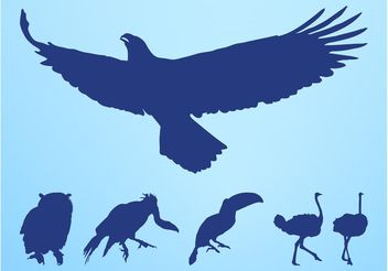Birds Silhouettes Set - vector gratuit #157639