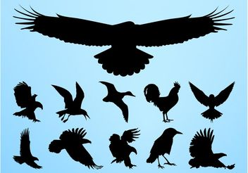 Birds Silhouettes Graphics - vector gratuit #157659
