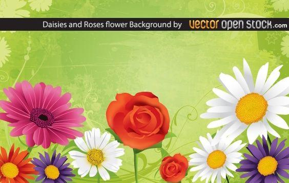 Descargar Vector Fondo De Flores Rosas Y Margaritas Gratis ...