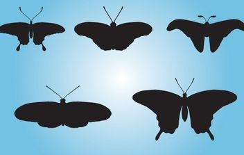 Black Butterfly Pack - Free vector #173979