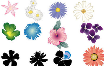 Flower Vector Set in Color - vector gratuit #175449