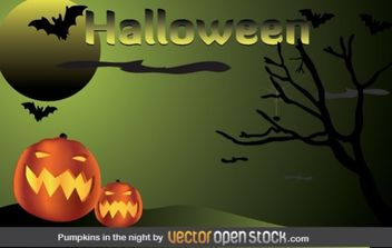 Halloween - Pumpkins in the night - vector gratuit #177549