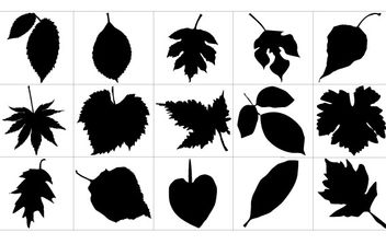 Leaf Silhouettes - Free vector #178489