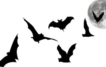 Bats and Full Moon - Free vector #179009