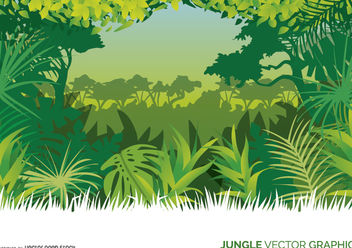 Cartoon Wood Jungle Sign - Free vector #179899
