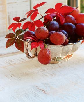 ripe grapes on the white table - image #183349 gratis