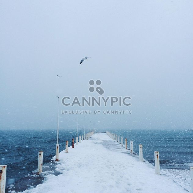 Sea and pier covered with snow - бесплатный image #183939