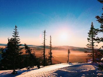 Amazing landscape with trees and mountains at in winter sunlight - бесплатный image #183979