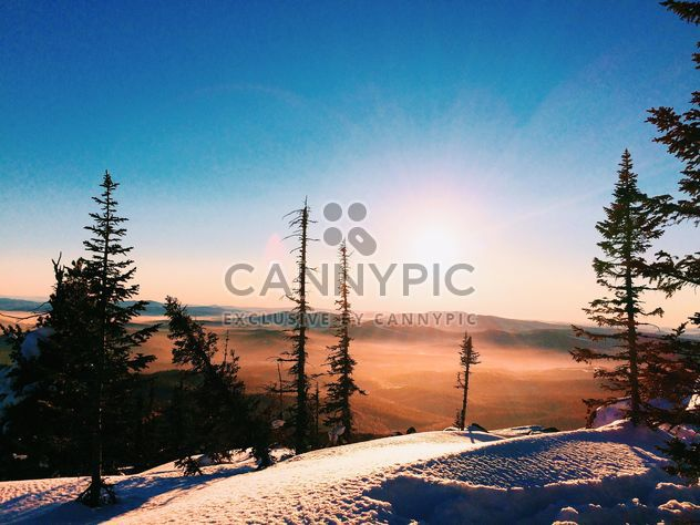 Amazing landscape with trees and mountains at in winter sunlight - Free image #183979