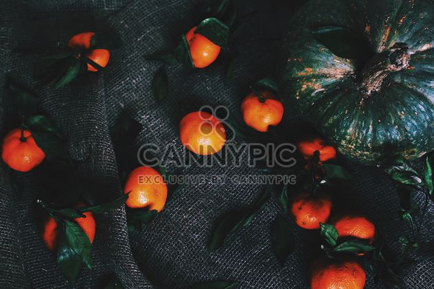 Pumpkin and tangerines - Kostenloses image #184079