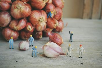 Minature workers with onion - image gratuit #187129