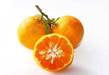 oranges on white background - image gratuit #187839