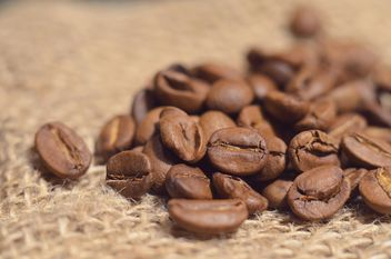 Close-up of coffee beans - image gratuit #198209