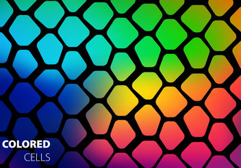 Free Colored Cells Vector - vector #199189 gratis