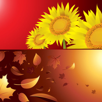Autumn And Summer Season Background Vectors - vector gratuit #202799