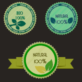 3 Free Vector Eco Labels - vector gratuit #202969