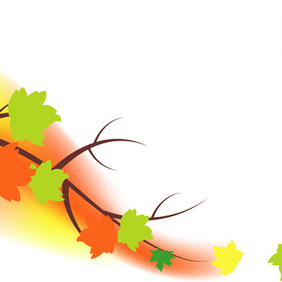 Autumn Tree Leaves - Free vector #204779