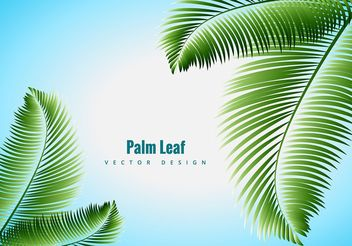 Palm Leaf Vector - Free vector #205119