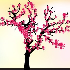 Cherry Blossom Tree Vector - vector #207179 gratis
