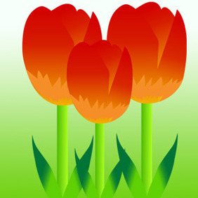 Free Vector Colorful Tulips - бесплатный vector #207369