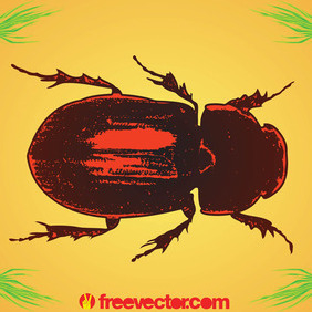 Beetle - Free vector #207759