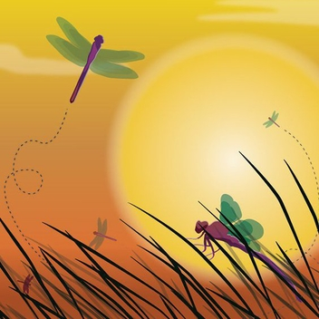 Dragonfly Sunset Background - vector gratuit #210069