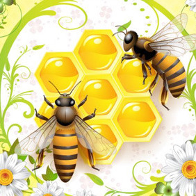 Honey And Bees - Free vector #210159