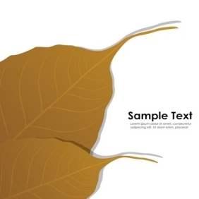 Autumn Card With Sample Text - vector gratuit #213299