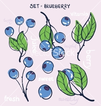 Free blueberry vector - vector #215779 gratis