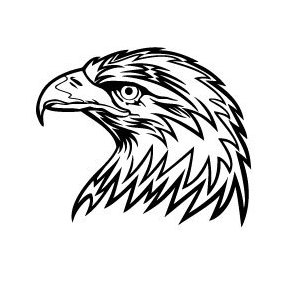 Eagle Head Vector Image 2 - Kostenloses vector #219469