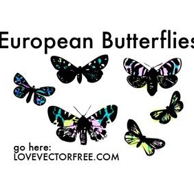 Mariposas europeas - vector #221009 gratis
