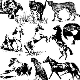 Animals Vector + Brush - Free vector #222739