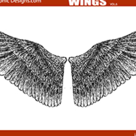 Hand Drawn Wings - vector gratuit #222989