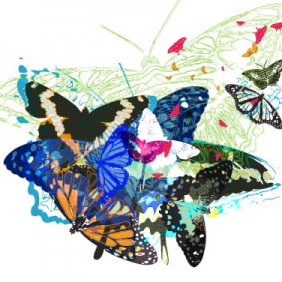 Butterflies Vector - бесплатный vector #223979