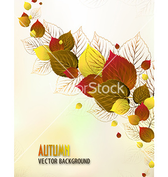 Free print vector - Free vector #226949