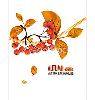 Free print vector - Free vector #228829