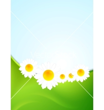 Free summer background with green waves and camomiles vector - vector gratuit #234849