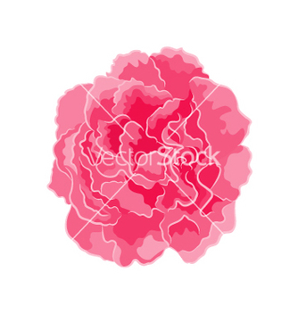 Free rose pink separate symbol symbol of love vector - Free vector #235689