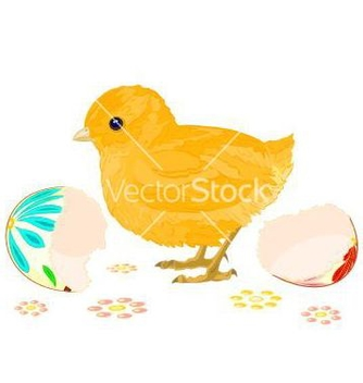 Free easter chick hatched from easter eggs vector - Kostenloses vector #236309