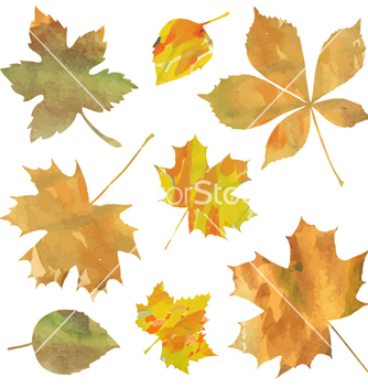 Free decorative leaves vector - vector #236929 gratis