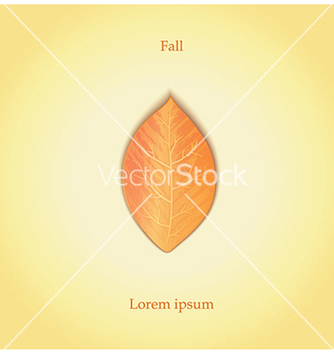 Free autumn leaf vector - Free vector #237459