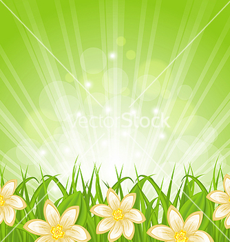 Free spring background with green grass and flowers vector - Free vector #238229