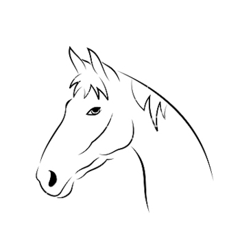 Free outline head horse isolated on white background vector - Free vector #239989