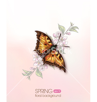 Free floral vector - Free vector #240779